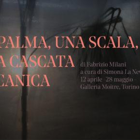 Fabrizio Milani - Una palma, una scala ed una cascata meccanica